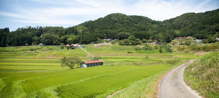 okushimane_top2.jpg